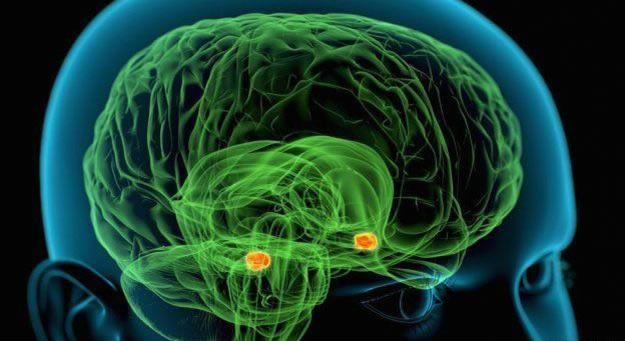 trastorno bipolar eutímico