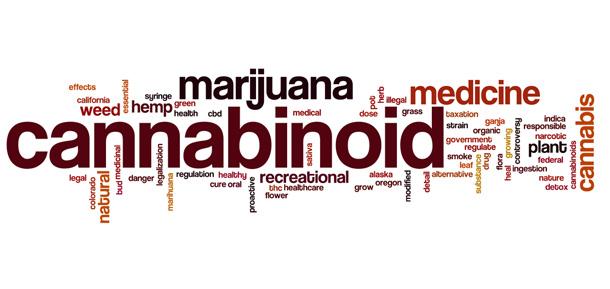 los-cannabinoides-inducen-perdida-de-memoria-a-traves-de-la-disminucion-de-la-energia-de-las-neuronas